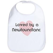 Loved by a Newfoundland Bib