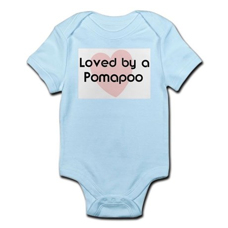 Loved by a Pomapoo Infant Creeper