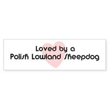Loved by a Polish Lowland She Bumper Bumper Sticker