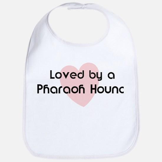 Loved by a Pharaoh Hound Bib