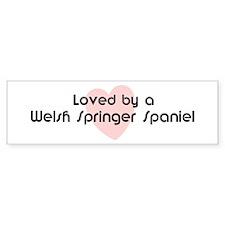Loved by a Welsh Springer Spa Bumper Bumper Sticker
