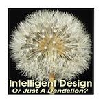 Intelligent Design Or Just A Dandelion? Tile Coast