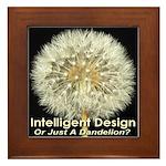 Intelligent Design Or Just A Dandelion? Framed Til