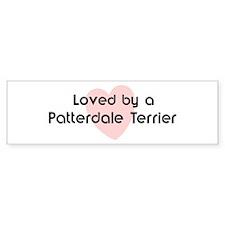 Loved by a Patterdale Terrier Bumper Bumper Sticker