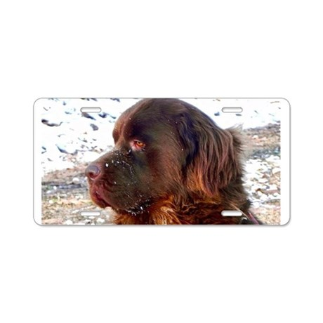 Brown Newfoundland Aluminum License Plate