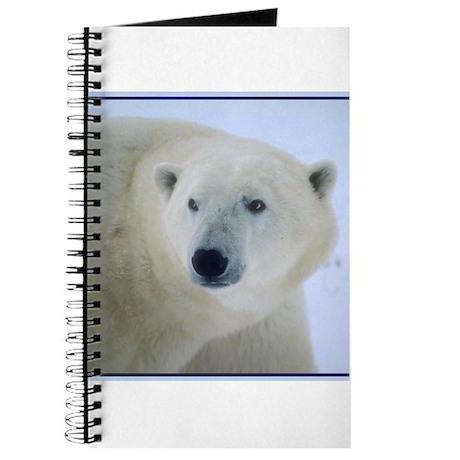 PolarBear5 Journal