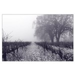Black and White Mustard in Fog Large Poster