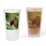 Tropical Parrot Drinking Glass