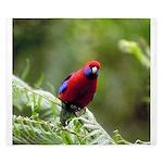 Tropical Parrot King Duvet