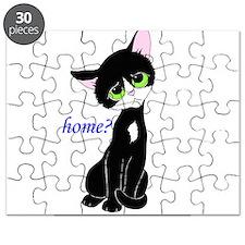 Home? (cat) Puzzle