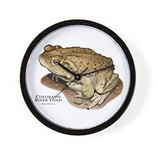 Colorado River Toad Wall Clock