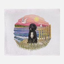 PinkSunset - PWD-5bw Throw Blanket