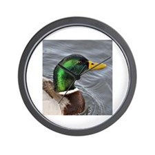 Male Mallard Wall Clock