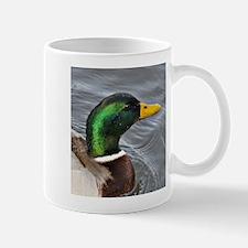 Male Mallard Mug