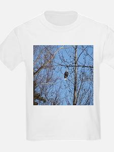 Bald Eagle #02 T-Shirt