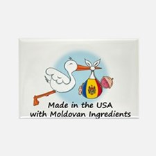 Stork Baby Moldova USA Rectangle Magnet
