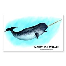Narwhal Whale Decal