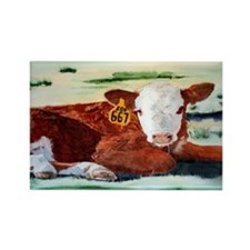 Hereford Calf Rectangle Magnet