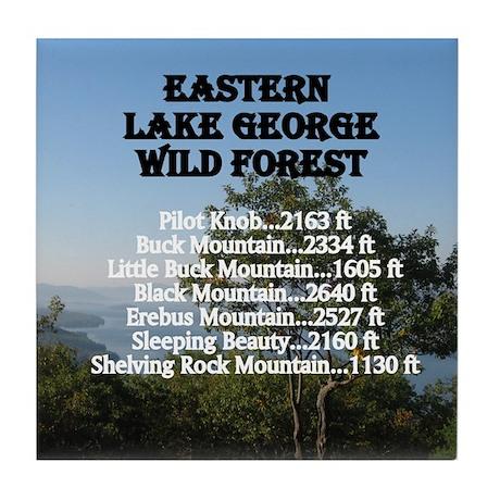 Eastern LG summits Tile Coaster