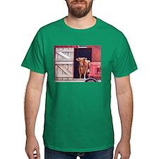 Barn Door Colored T-Shirt