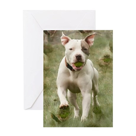 Pit Bull 10 Greeting Card