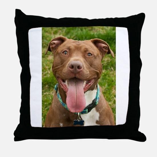 Pit Bull 13 Throw Pillow