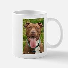 Pit Bull 13 Mug