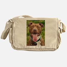 Pit Bull 13 Messenger Bag