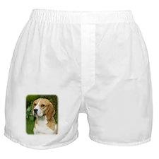 Beagle 9K34D-17 Boxer Shorts