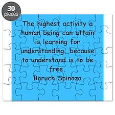 Spinoza Puzzle