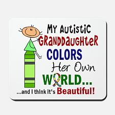Colors Own World Autism Mousepad