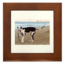 Great Dane 6 Framed Tile