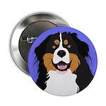 Bernese Mountain Dog 2.25