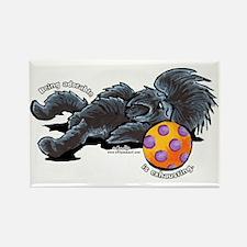 Adorable Affenpinscher Rectangle Magnet