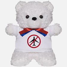 No-fly zone airplane Teddy Bear