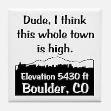 Boulder High Town Tile Coaster
