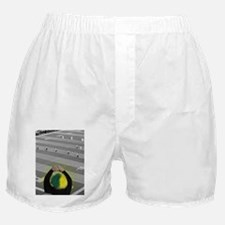 Oregon Ducks Fan Boxer Shorts