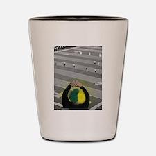 Oregon Ducks Fan Shot Glass