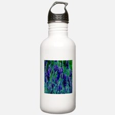 Sonoma Lavendar Water Bottle