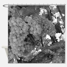 Grapes As Art Shower Curtain