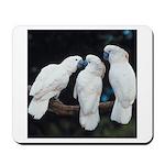3 White Parrots Mousepad