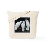 3 White Parrots Tote Bag