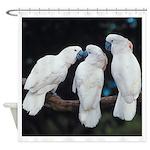 3 White Parrots Shower Curtain