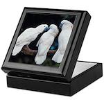 3 White Parrots Keepsake Box