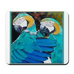 Turquoise Parrots Mousepad