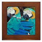 Turquoise Parrots Framed Tile