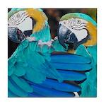 Turquoise Parrots Tile Coaster