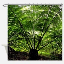 Rainforest Fern Fan Hawaii Shower Curtain