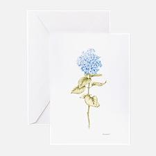 Hydrangea Botanical Greeting Cards (Pk of 20)