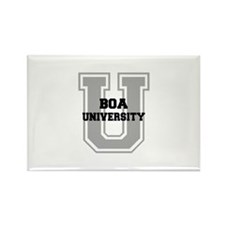 Boa UNIVERSITY Rectangle Magnet